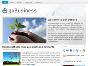 goBusiness-WordPress-Theme